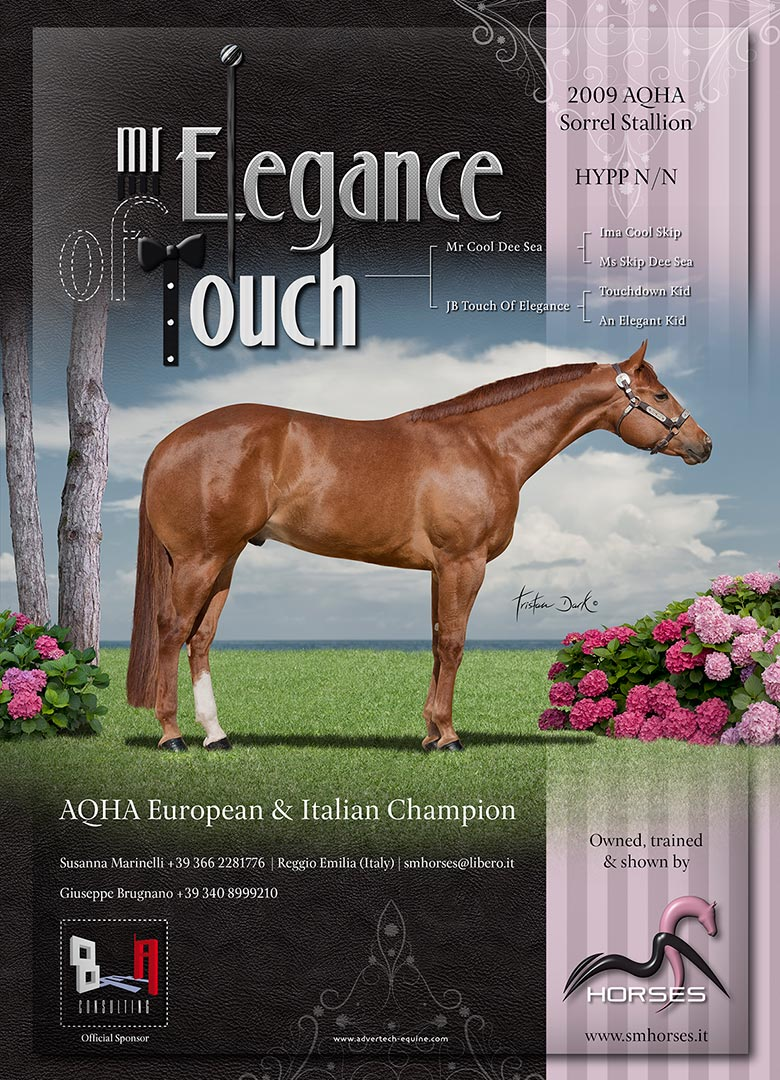 Mr Elegance Of Touch