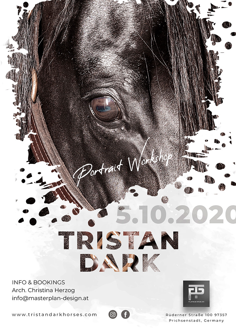 Tristan Dark Horses | Workshop